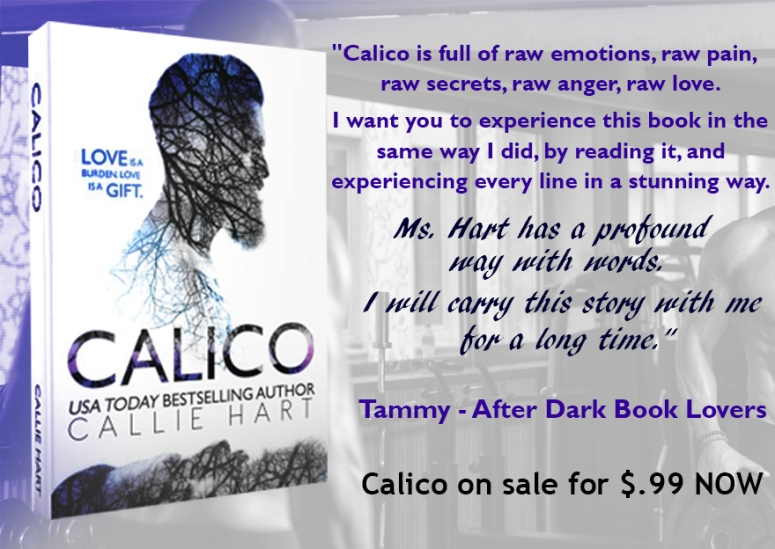 Calico Blog Review Quote on sale 2